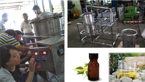 Ylang-Ylang Oil Extractor Project